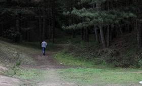 Robert Wilson 'Walking'