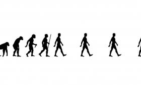 Evolution (2020)